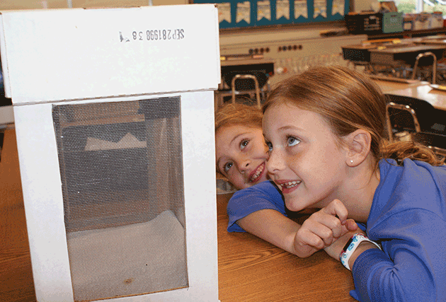 students amazed by butterflies hatching