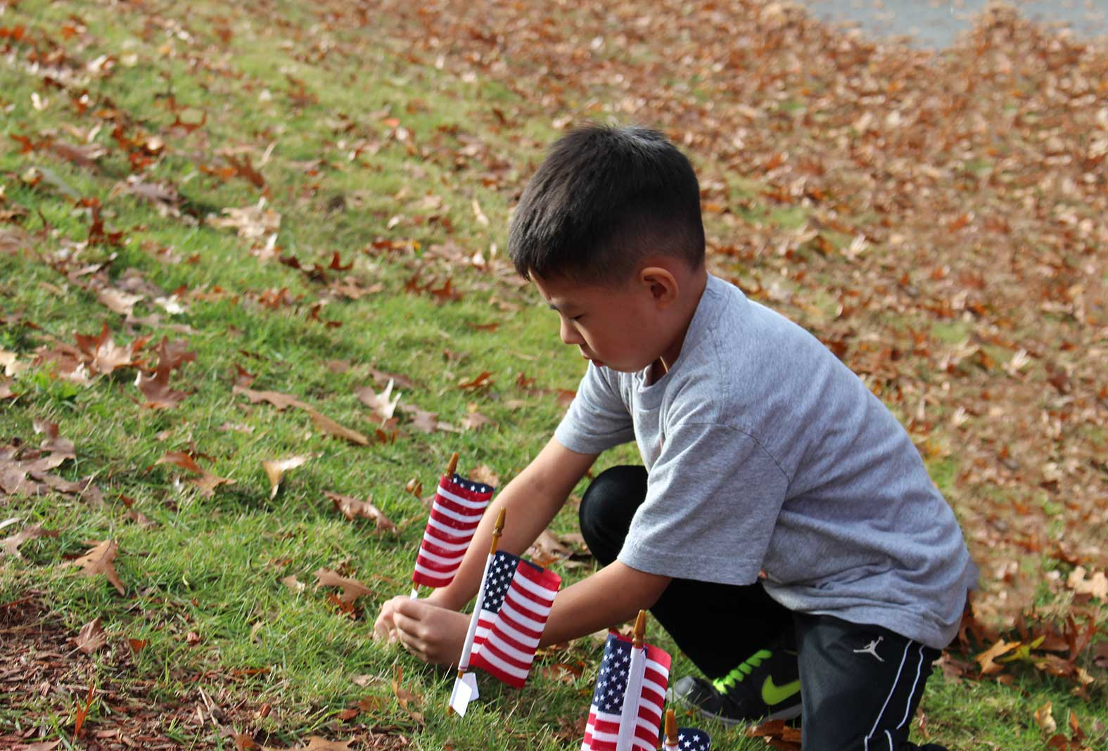 Student planting flag for Veteran's Day